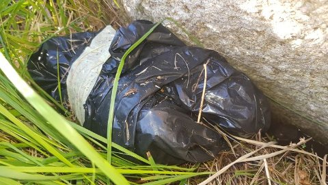 GJEMT BAK EN STEIN: Innpakket i en sort søppelsekk, fant politiet nærmere to kilo amfetamin og 500 MDMA-tabletter i et skogholt ved Paddeveien i Sveio. Funnet ble gjort etter lang tids etterforskning av et litauisk miljø i Haugesund.