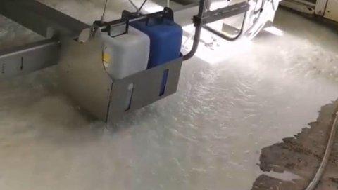 Tusenvis av liter med melk måtte rett i sluken da melkebilen ikke kom seg frem til gården.