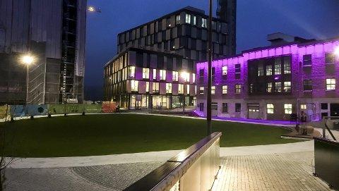 Verket: De nye bydelene har appell, konstaterer Finn-Erik Blakstad. foto: espen vinje