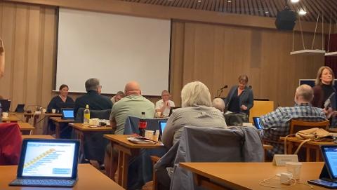 NU UTVIKLING: Nå har Fremskrittspartiet valgt å anmelde blant andre ordfører og kommunedirektøren i Vestre Toten etter krisen i hjemmetjenesten.