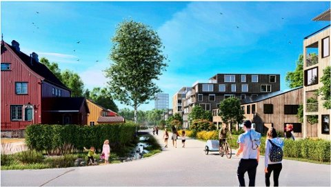 Fortetting: Asplan Viak mener område på nordsiden av Høgskoleveien bør fortettes kraftig.