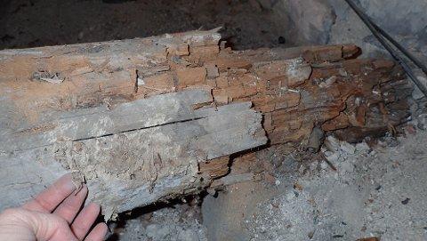 HELT NEDBRUTT: Slik så den ene gulvbjelken i Skedsmo kirke ut. Treverket var helt nedbrutt av ekte hussopp.