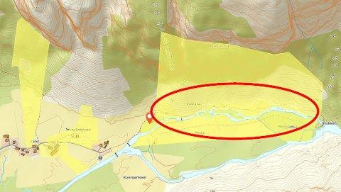 NY BANE: Her ønskjer grunneigar, Aceshop og Lysefjorden Utvikling å føre opp ein frisbeegolfbane.