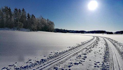 VAKKERT: Her fra jordene ved Ringvoll.