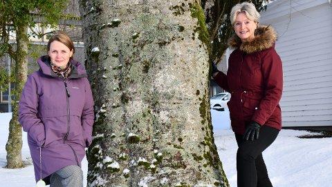 Fylkeskulturdirektør Heidi-Iren Wedlog Olsen (t.v.) og fylkesordfører Tove-Lise Torve mener folkehelseundersøkelsen er en milepæl i folkehelsearbeidet og håper at så mange som mulig svarer på undersøkelsen.