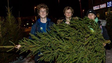 ÅS IL FARMERS: Eliot Ronaldo Daughton (t.v.), Andreas manger Gilboe og Magnus Kile-Stokholm da de hentet juletrær i 2017.