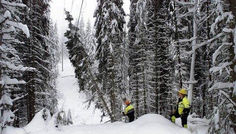 UTSATT: Nord-Odal blir stadig rammet av strømbrudd, blant annet på grunn av vindfall om vinteren. Nå investerer Eidsiva millioner for at strømforsyningen skal bli mer stabil.
