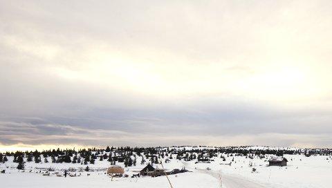 KLARSIGNAL: Grunneier Pihl kan nå sette sine planer om fortetting Kroksjølia ut i livet.