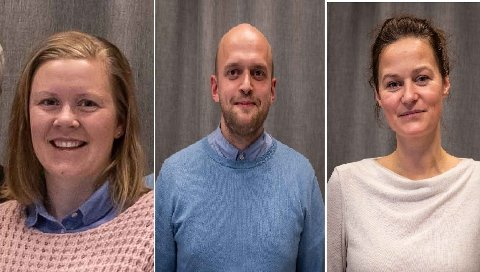 Johannes Wahl Gran, Monica Rønning, Kari Svingheim, listakandidater, MDG Lillehammer