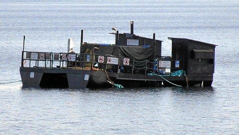 TESTANLEGG: Mange har stusset over hva det er slags innretning som er plassert i sjøen et par hundre meter fra land mellom Skogn Marina ved Holsandbukta og Norske Skog Skogn på Fiborgtangen. Dte viser seg å være et testanlegg for hemmelig ny teknologi.