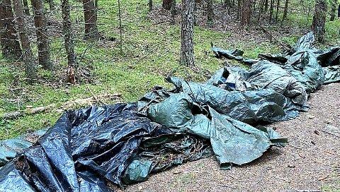 PRESENNINGER: Ekteparet Ringereide fant rundt 20 presenninger, nye og gamle, da de ryddet søppel i sin egen skog.