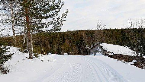 Ved Stokkestua: – Dette bildet ble tatt 20. januar ved Stokkestua, opplyser Eira Weseth. Foto: Privat