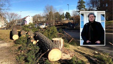 Lokalhistoriker Lars Thue (innfelt) retter kritikk mot BU-politikere på Nordstrand etter trefellingen i Langbølgen.
