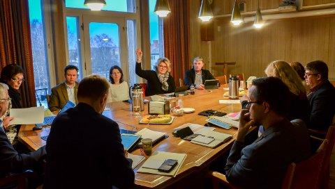 MOT: Frps Kersti Grindalen ble alene om å støtte sitt eget forslag om å si nei til mottak av  20 flyktninger i 2018.