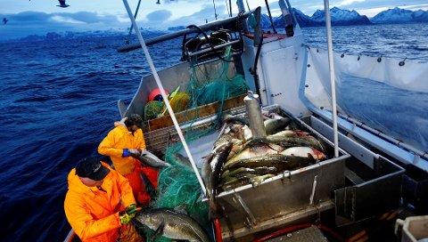 Fiskarar hadde ei endring i snittløna på minus 2,14 prosent i 2017.