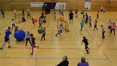 MÅ BLI GRATIS: Halleia for barn og unges aktiviteter i Åsneshallen, som her, i gymnastikksaler og andre kulturarenaer må settes i null, mener Åsnes Ap.