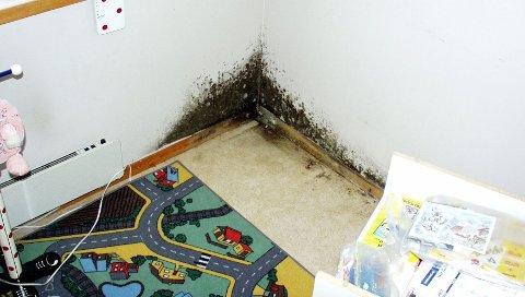 Muggsopp på barnerommet kan bli resultatet av sommerkondens.