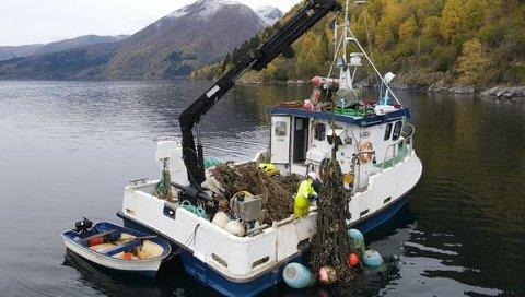 RYDDAR: Kystverket er i gang med å rydde gamle blåskjelanlegg frå fjordane i Vestland fylke. Prosjektet er finansiert ved hjelp av korona-midlar, for å styrkje aktiviteten i bygg- og anleggssektoren samtidig som ein får utført viktige tiltak.