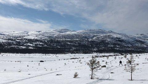 Flott vær i Lyngsheia på påskeaften. Men skiføret var preget av skare og harde, isete skispor.