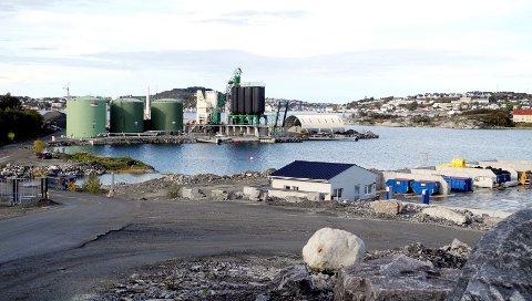 Husøya har tidligere vært utpekt som et mulig testanlegg for utprøving av Veidekkes produksjon av asfalt ved hjelp av hydrogen