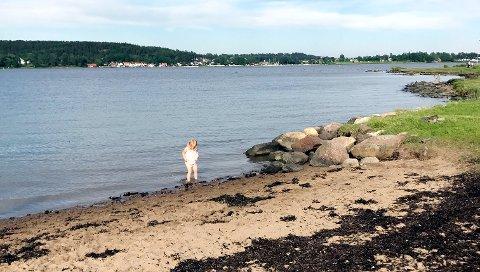 ROSANES ER NEI: Ikke bad her på Rosanes før stranda er friskmeldt. Nå er det målt for mange tarmbakterier i vannet.