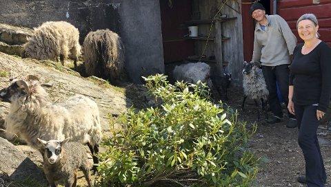 Valgte gårdslivet: Lisbeth Tamara Hammer og Jo Grimstad har valgt å leve landlig på Vegårshei.