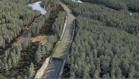 Hallandshei:  Ett av stridstemaene. Nye Veier har her foreslått en miljøtunnel (bildet). Fotoillustrasjon: Nye Veier