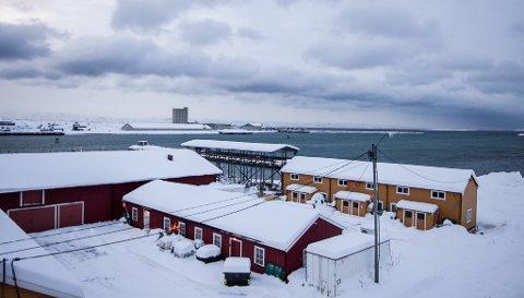 MER SNØ: Meteorologen melder om mer snø i øst, men ikke av samme mengder som man opplevde blant annet i Vadsø tidligere denne uken. Bildet tatt i Vadsø søndag 24. januar.