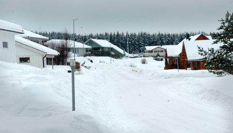 Tomtefesterne på Helgestadfeltet har frist ut året på å takke ja til kommunens tilbud.