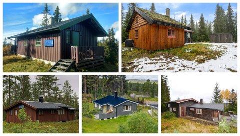 RIMELIG FRITID: En rekke rimeligere fritidsleiligheter og hytter er til salgs i pinsen i Vestoppland. 17 hytter ligger ute til under millionen.