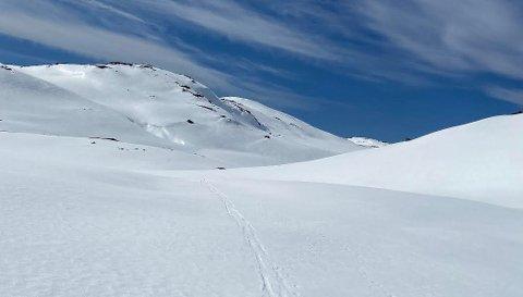 På det høyeste mellom Vinddalen og Flørli. Bildet ble tatt i dag ved Sauafjellet og utover mot Finnes og Elefantdalen.