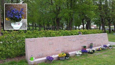 TIL MINNE: Minnelunden og kapellet på Tønsberg gamle kirkegård er en fin og rolig plass for de etterlatte, forteller Ruth Arntzen. Dessverre får ikke blomstene hun setter der stå i fred. – Man har lyst til å sette noe fra seg der som en slags hilsen, men når det blir sånn så vet jeg liksom ikke hva jeg skal gjøre, sier Ruth.