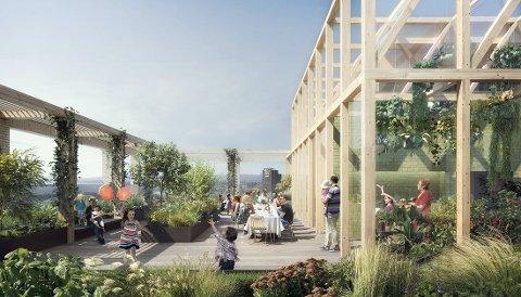 TAK: Hvor mye går det egentlig an å dyrke på et urbant tak? I det nye Landbrukskvartalet skal grensene testes.