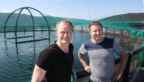 Mål for svindel: Geir Wenberg (t.v.) og Ole Kristian Kjellbakk vet at de håndterer en vare der mye penger er involvert og at det lokker til seg svindlere.