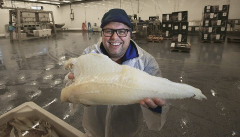 Havets gull: Lutefisksalget står for 14 av 65 millioner av Brødrene Berg ASs årlige omsetning. Men daglig leder Roger Jakobsen skulle ønske navnet i seg selv ikke var så negativt ladet, slik at flere vil prøve delikatessen fra Lofoten. Alle foto: Tom Melby