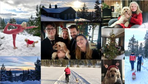 HYTTEJUL: Familien Gaare Laaches nye tradisjone er å feire jul på hytta i Tempelseter.