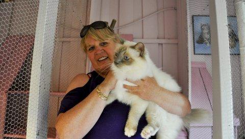 MÅ AVVIKLES: Monica Pedersens rosa kattepensjonatet Cash Cat Hotell taklet ikke den økonomiske påkjenningen som følge av reiserestriksjonene.