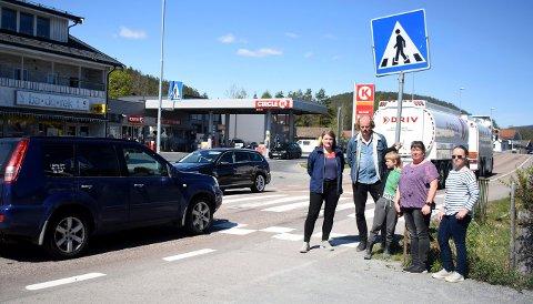Fra venstre: Hilde Honerud, Jon Hovland, Louis Honerud (8), Irene Pladsen og Kirsti Berg Johansen er bekymret for fotgjengerovergangen som barna krysser på vei til skoleveien.