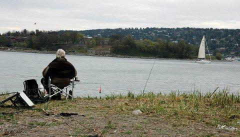 FORBUD: Fiskeforbudet gjelder for alle; både fritids-, turist- og yrkesfiskere. Fiske etter anadrom fisk som sjøørret og laks er ikke omfattet av forbudet. .Illustrasjon
