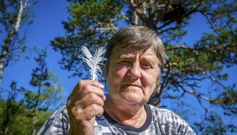 Glede: For Anny Unosen (65) var det en glede at kongeørnparet kom tilbake og bygget nytt reir i skogen hennes. Det gav henne en slags fred etter flere år med stress og engstelse. foto: christine karijord