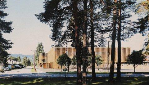 SENTRUMSNÆRT: Slik vil det se ut fra Sjursparken hvis aktivitetshuset blir plassert nærmere sentrum.