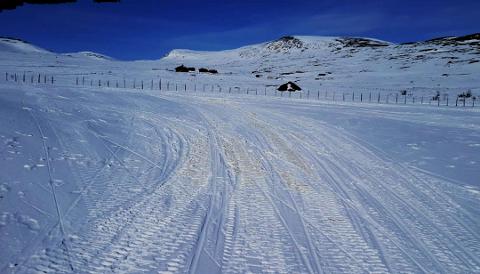 Spor etter snøskuterkjøring i Knutshø landskapsvernområde i påska. Foto: Privat