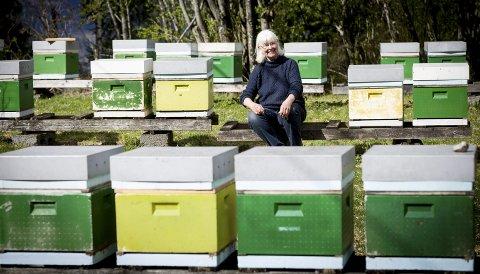Ingegärd Øien har vært en av landets største produsenter av økologisk honning i mange år. I fjor leverte hun fem tonn til Honningcentralen på Kløfta. Alle foto: Lisbeth Lund Andresen