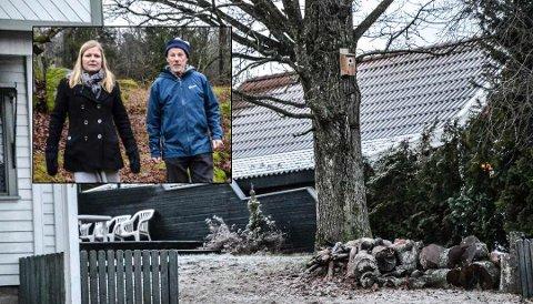 FORUNDRET: Marte Rindal Jacobsen og Christopher Gallaher er forundret over at eika i Stokke ble felt før Naturvernforbundets klage var behandlet.