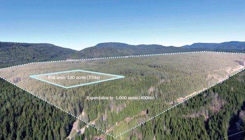 FORTSATT SPØRSMÅL: Mange ønsker seg et datasenter på Gromstul i Skien kommune. Det stilles fortsatt flere spørsmål om prosjektet og konsekvensene.
