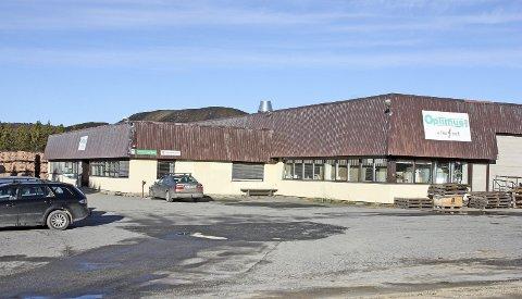 Optimus AS er en vekstbedrift på Røros og 75 prosent av selskapets aksjer eies av Røros kommune. Slik det ser ut blir kommunen nå eneeier. Arkivfoto: Tor Enget