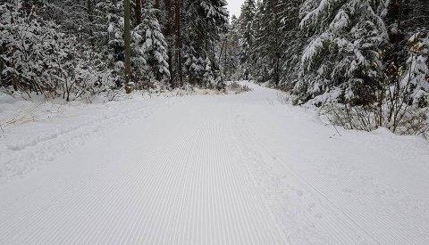 INNBYDENDE? Flere har latt seg friste og er ute på runder i marka i kveld, får Fredriksstad Blad høre fra skiklubben.  De har fått kjørt maskiner og pakket snøen, så det er mulig å gå på flere ulike strekninger fra Skihytta.