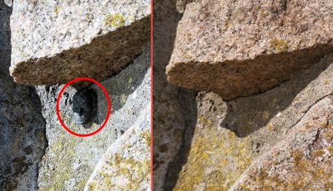 FJERNET: Denne hodeskulpturen (på bildet til venstre) er på mystisk vis forsvunnet fra festningsmuren i Gamlebyen.