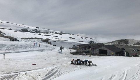 GIR IKKE OPP: Selv om isbreen på Folgefonna har trukket seg tilbake håper skisenteret Fonna Glacier ski resort de kan sikre fremtidens sesonger ved å rulle ut en duk over snøen for å forsinke snøsmeltingen. Foto: Fonna Glacier ski resort