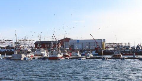 STENGT: Fiskebruket på Kløvnes har måttet stenge midlertidig.